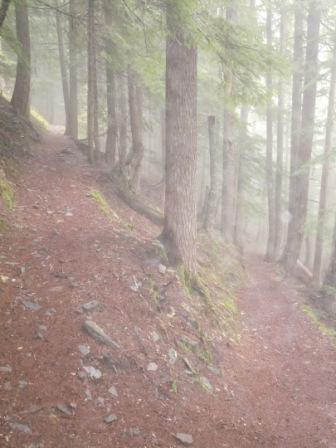 Foggy Morning on Rampart Ridge Trail